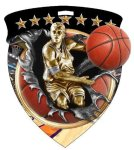 Basketball (Male) Medal Color Shield Medal Awards