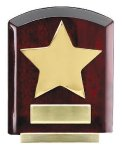 Star Dome Corporate Plaques Stand Patriotic Awards