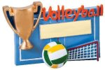 Winners Cup Resin Volleyball Volleyball Trophy Awards